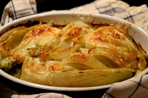 Fennel Gratin: Everyday Is A Holiday-AROMA CUCINA